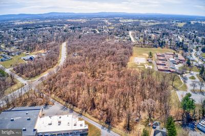 Hagerstown Residential Lots & Land For Sale: 17755 Halfway Boulevard