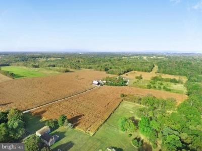 Hagerstown Farm For Sale: 12744 Little Antietam Road