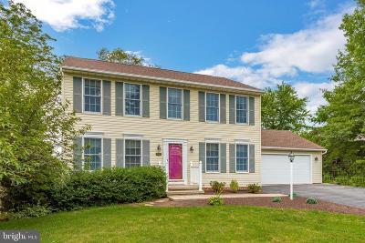 Hagerstown Single Family Home For Sale: 19212 Jamestown Drive