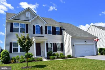 Hagerstown Single Family Home For Sale: 18207 Misty Acres Drive