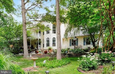 Boonsboro Single Family Home For Sale: 9153 Crystal Falls Drive