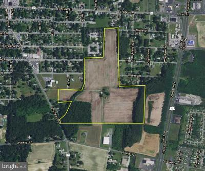 Residential Lots & Land For Sale: 705 Bi State Boulevard