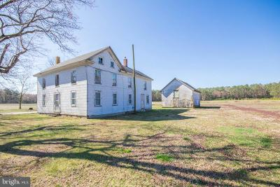 Wicomico County Farm For Sale: 31425 Johnson Road
