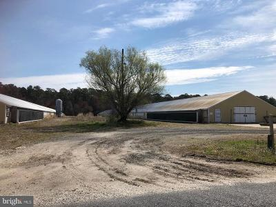 Farm For Sale: 9435 Melson Church Road