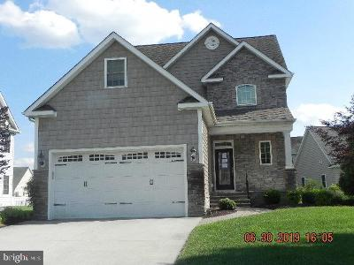 Somerset County, Wicomico County, Worcester County Single Family Home For Sale: 215 Ringgold Road