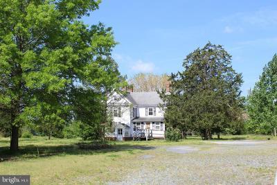 Wicomico County Farm For Sale: 32418 Mount Hermon Road