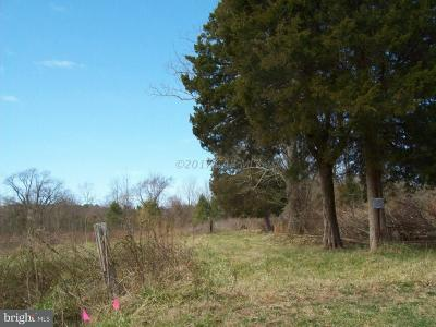 Wicomico County, WICOMICO COUNTY Residential Lots & Land For Sale: 3450 Texas Road