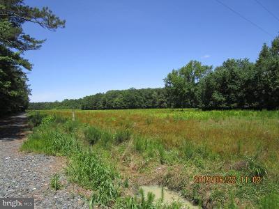 Wicomico County Farm For Sale: 3644 Pocomoke Road