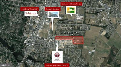 Commercial For Sale: S Division Street At Farmers Market Road