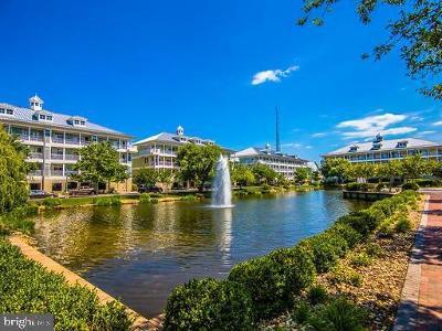 Ocean City Single Family Home For Sale: 37 Fountain Dr W W #LUG-BG-3
