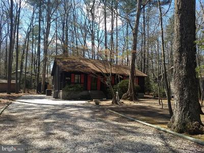 Ocean Pines Single Family Home For Sale: 63 White Horse Drive