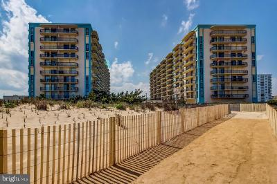 Ocean City Condo For Sale: 13110 Coastal Highway #613