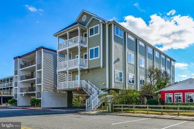 Ocean City Condo For Sale: 13 70th Street #2 CORAL