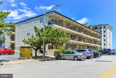 Ocean City Condo For Sale: 2 137th Street #304 AHOY