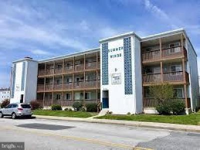 Ocean City Condo For Sale: 424 Lark Lane #E202
