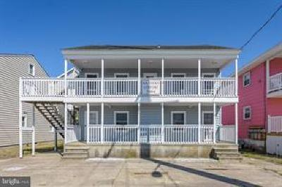 Ocean City Multi Family Home For Sale: 7004 Coastal Highway
