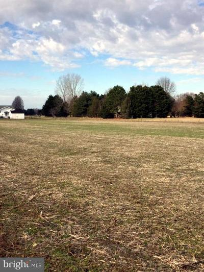 Bishopville Residential Lots & Land For Sale: Collins Road #LOT #3