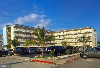 Berlin, Bishopville, Ocean City, Ocean Pines Commercial For Sale: 12000 Coastal Highway