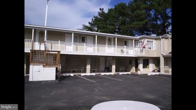 Berlin, Bishopville, Ocean City, Ocean Pines Commercial For Sale: 9942 Elm Street
