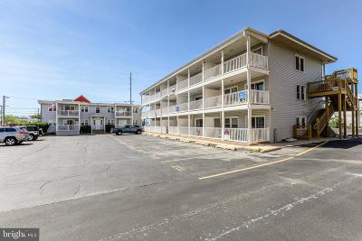 Ocean City Single Family Home For Sale: 12 72nd Street #102
