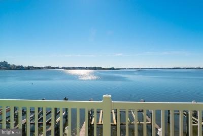 Ocean City Single Family Home For Sale: 419 Bayshore Drive #202