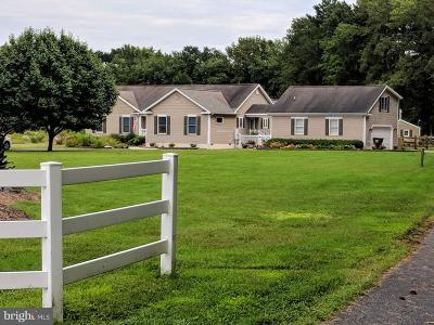 Worcester County Farm For Sale: 8846 Peerless Road