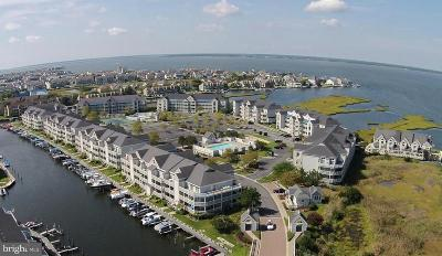 Ocean City Single Family Home For Sale: 205 125th Street #332HE5