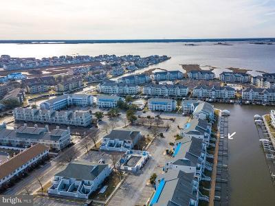 Ocean City Single Family Home For Sale: 12301 Jamaica Avenue #J23405