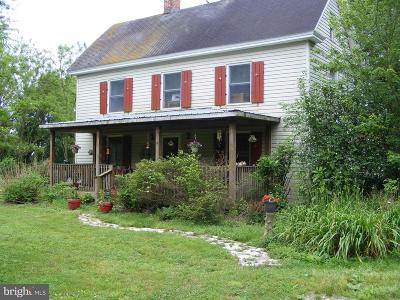 Pocomoke City Single Family Home For Sale: 3040 Brantley Road