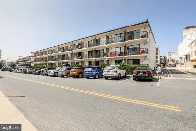 Ocean City Single Family Home For Sale: 8 36th Street #101