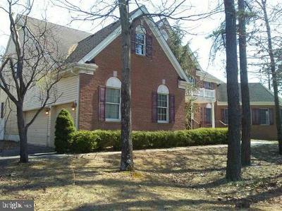 Single Family Home For Sale: 102 New Bridge Road