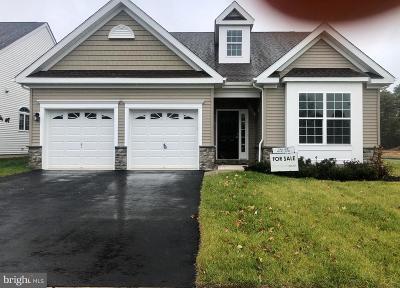 Atlantic County Single Family Home For Sale: 107 Merlino Lane