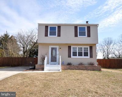 Atlantic County Single Family Home For Sale: 509 Martinelli Avenue