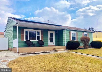 Atlantic County Single Family Home For Sale: 205 Muccio