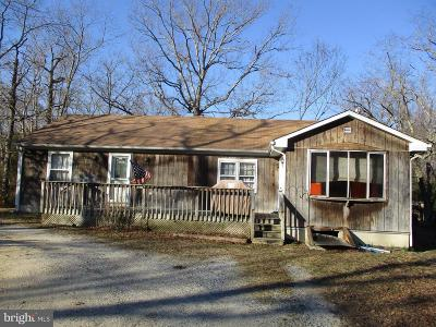 Atlantic County Single Family Home For Sale: 207 Route 54