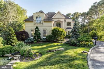 Atlantic County Single Family Home For Sale: 252 Aschwind Court
