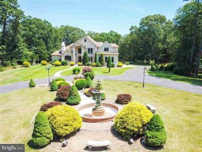 Atlantic County Single Family Home For Sale: 164 Old New York Road