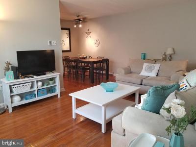 Atlantic County Single Family Home For Sale: 14 N Sacramento Avenue