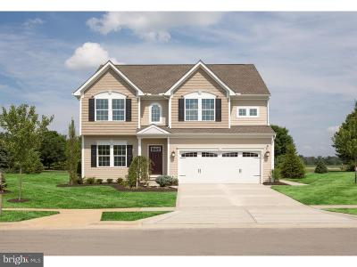 Single Family Home For Sale: 2 Pear Tree Court