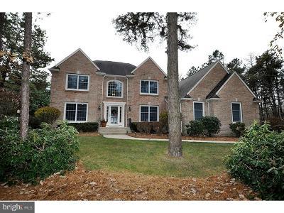 Medford Single Family Home For Sale: 8 Midbridge Drive