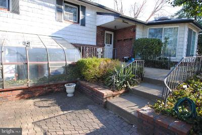 Burlington Single Family Home For Sale: 13 Beechwood Avenue