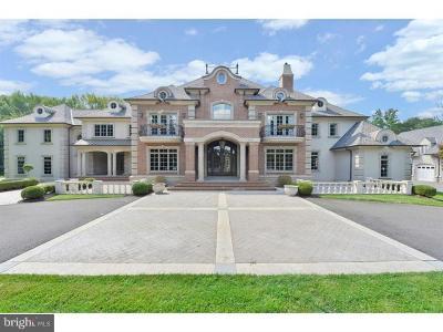 Mount Laurel Single Family Home For Sale: 263 Mount Laurel Road