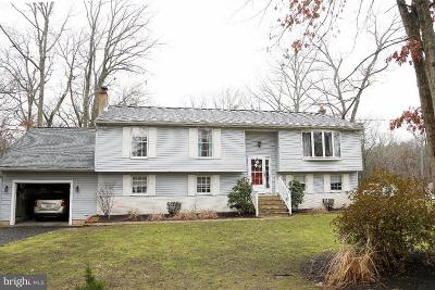 Tabernacle Single Family Home For Sale: 73 Summit Drive