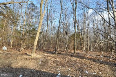 Residential Lots & Land For Sale: 53 Meany