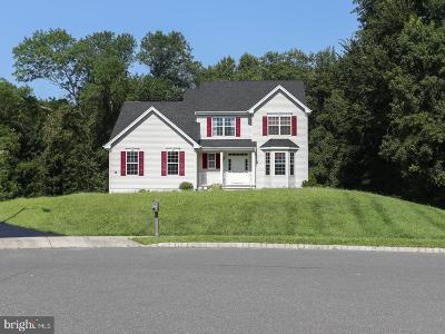 New Hanover Estates Single Family Home For Sale: 8 Laburnum Close