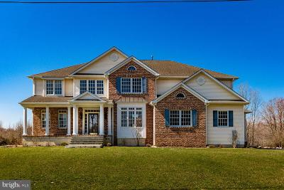 Mount Laurel Single Family Home For Sale: 501 Walton Avenue
