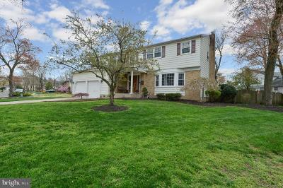 Mount Laurel Single Family Home For Sale: 766 Amsterdam Road