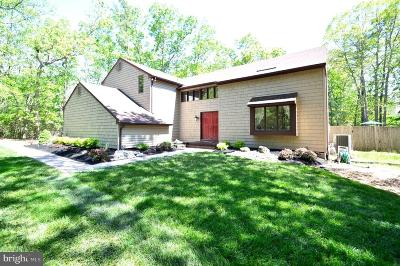 Medford Single Family Home For Sale: 6 Pleasant Mill Court