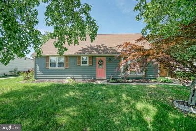 Single Family Home For Sale: 243 Tenby Chase Drive