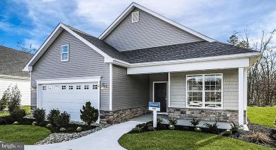 Eastampton Single Family Home For Sale: 15 Bridge Boulevard